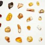 History and the process of amber formation